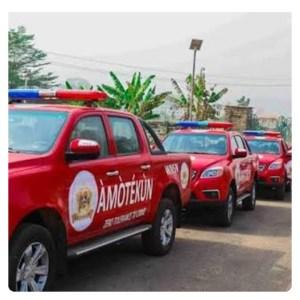 Amotekun: Southern Leaders Attack Buhari's Govt