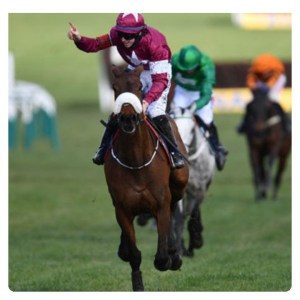 Cheltenham Horse Racing 2020 News