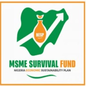 Survival Fund Registration: FG Opens The Portal, Apply Now