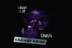 Omah Lay Damn (Cricket Remix)