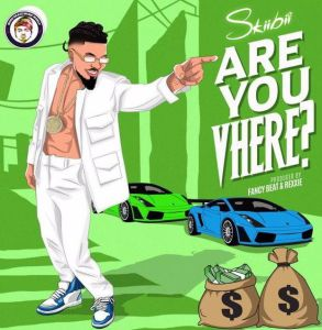 Skiibii - Are You Vhere (Mp3 Download)