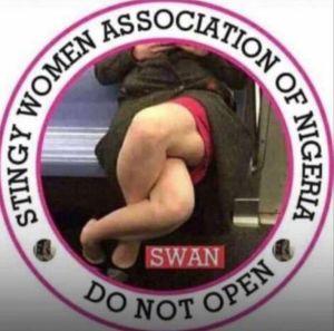 Stingy Women Association Logo