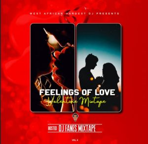 DJ Fanes - Valentine Party Mix (Feeling Of Love)