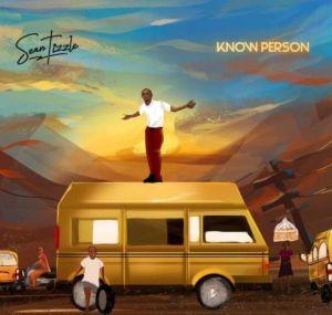 Sean Tizzle - Know Person (Mp3 Download)