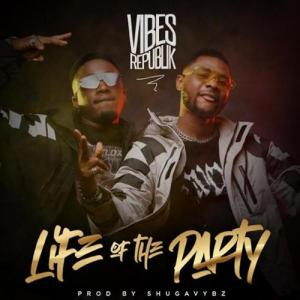 Vibes Republik - Life Of The Party Mp3 Download