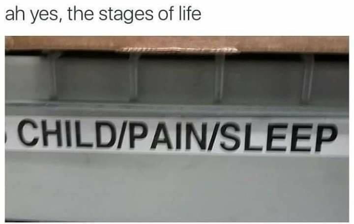 Las etapas de la vida.