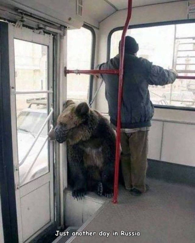 Todo normal por Rusia.