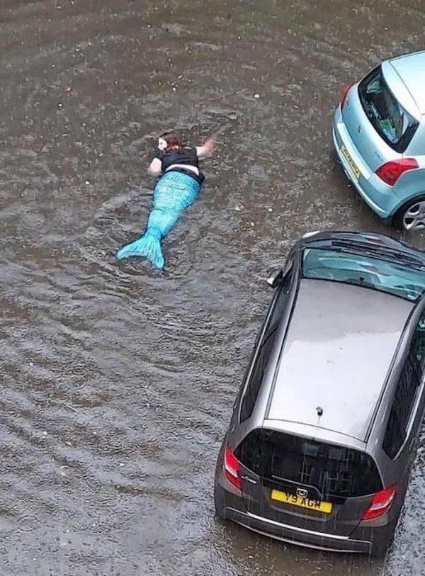 El cambio climático sigue causando estragos.