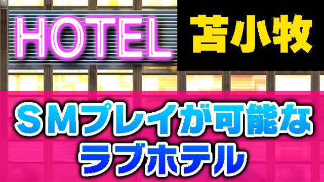 【苫小牧市内】SMプレイが可能なラブホテルはクレアリゾートの208号室