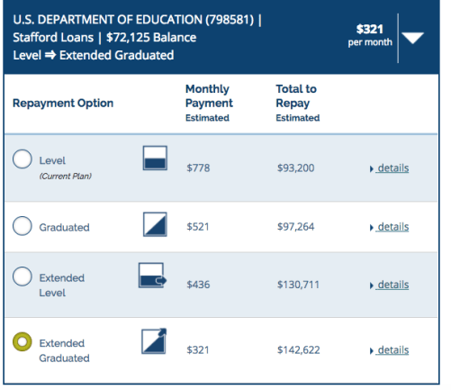 Example of Student Loan Repayment Options