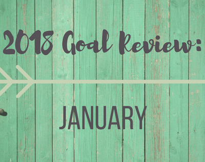 Review of 2018 goals progress as of January