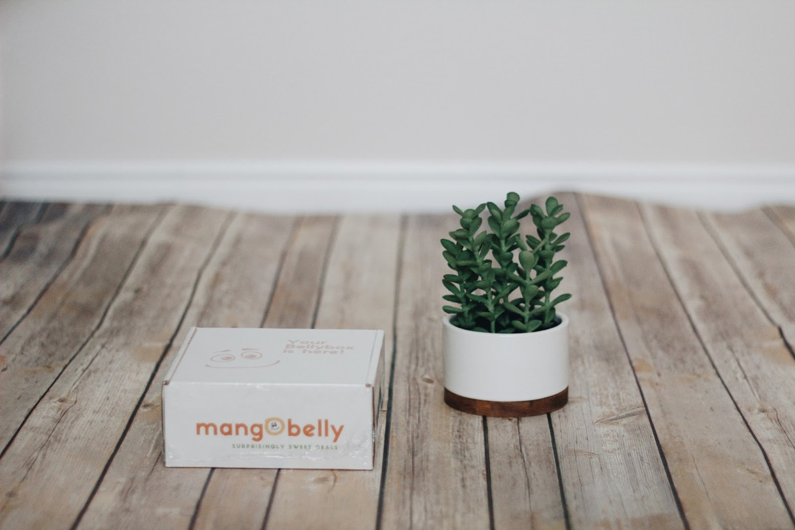 belly box mail subscription christmas
