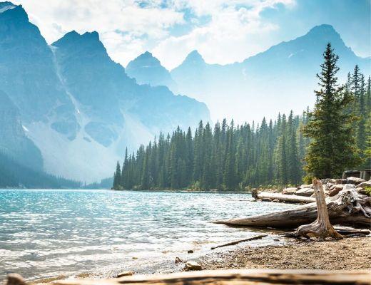 voda, hory a les