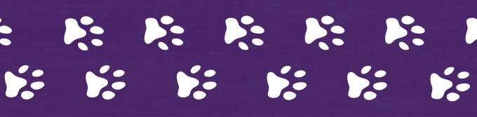 Bonus material: paw prints graphic