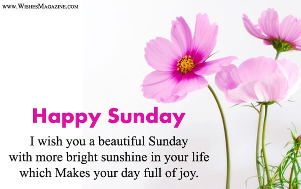 Latest Happy Sunday Wishes Messages