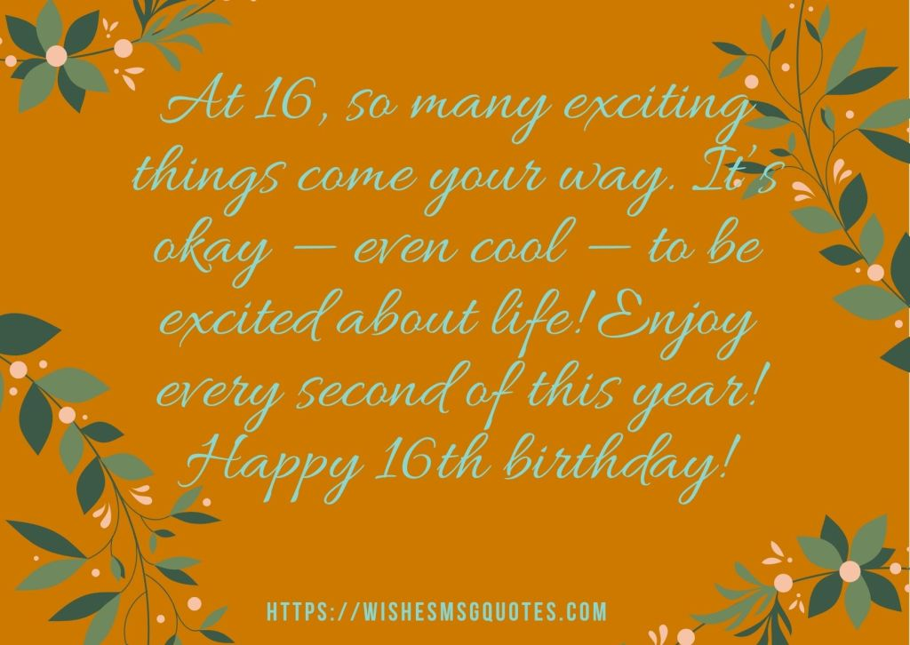 Birthday Quotes For Boy And Girl 16th Birthday