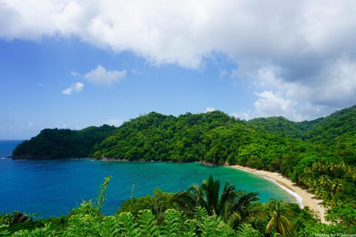 The turquoise blue waters of a cove in Tobago