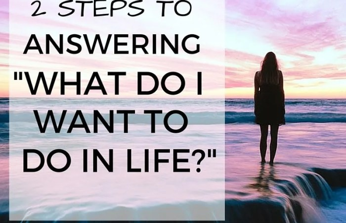 2 Steps To Answering: What Do I Want To Do In Life?
