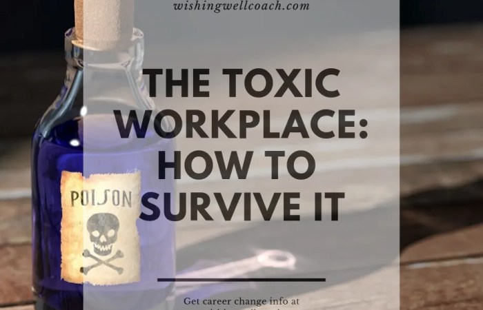 The Toxic Workplace: How to  Survive It