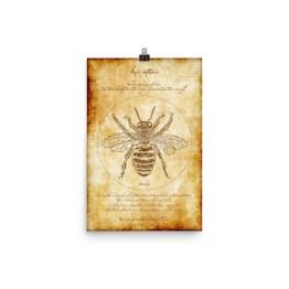 Vitruvian Bee Poster
