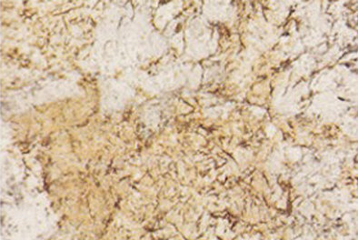 supplier-granit-bianco-antico-granit-import-harga-granit-import-wismita-marmer-marble
