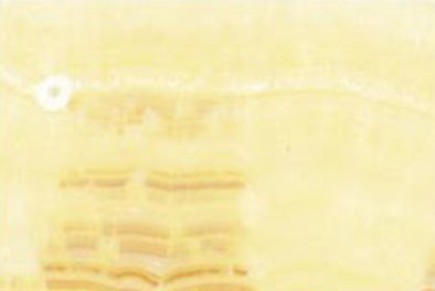 supplier-marmer-onyx-gold-veincut-marmer-import-harga-marmer-import-wismita-marmer-marble
