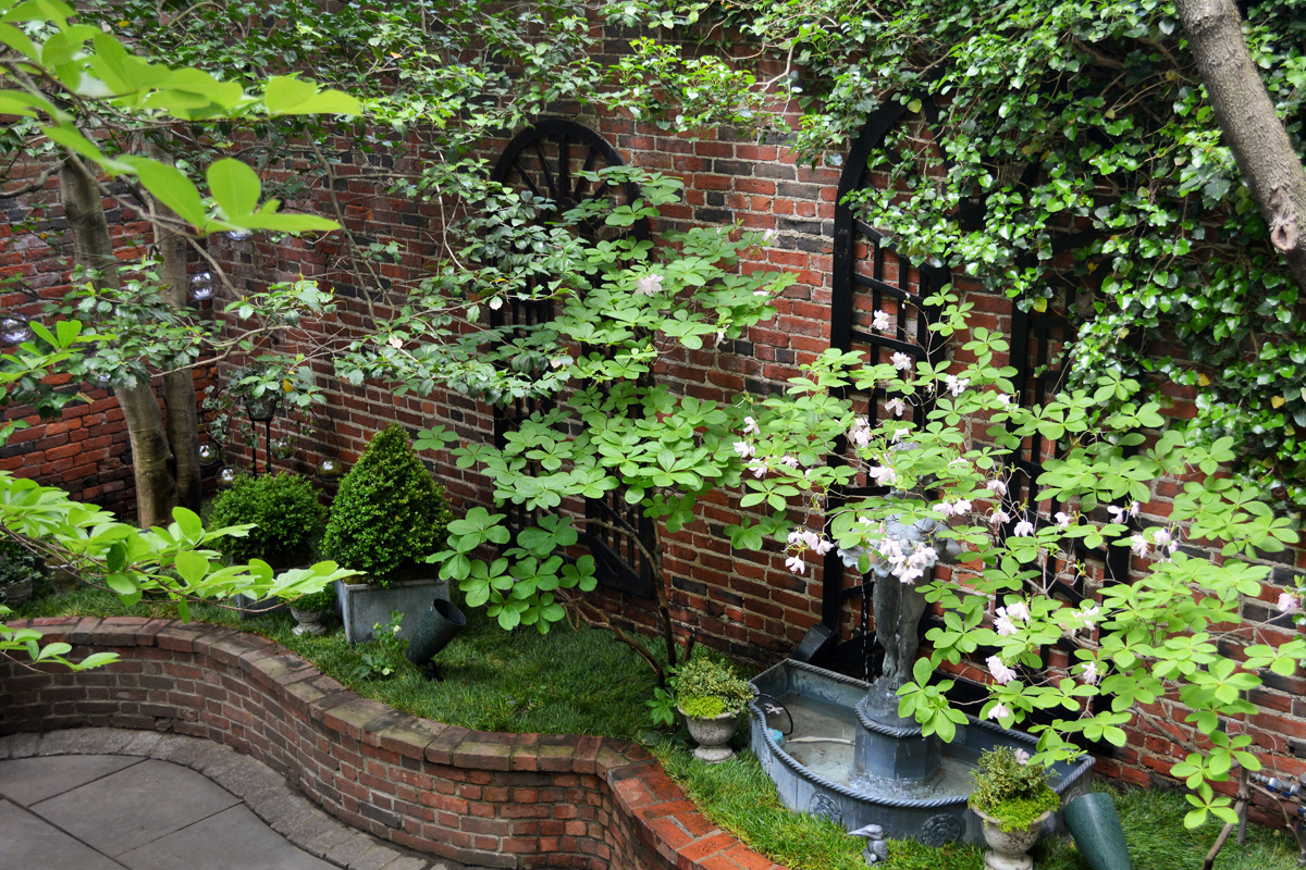 Shady Courtyard Garden