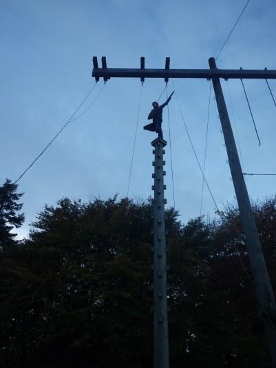 Pamper Pole