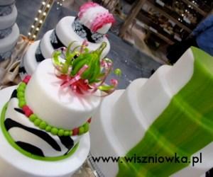karmel tort2