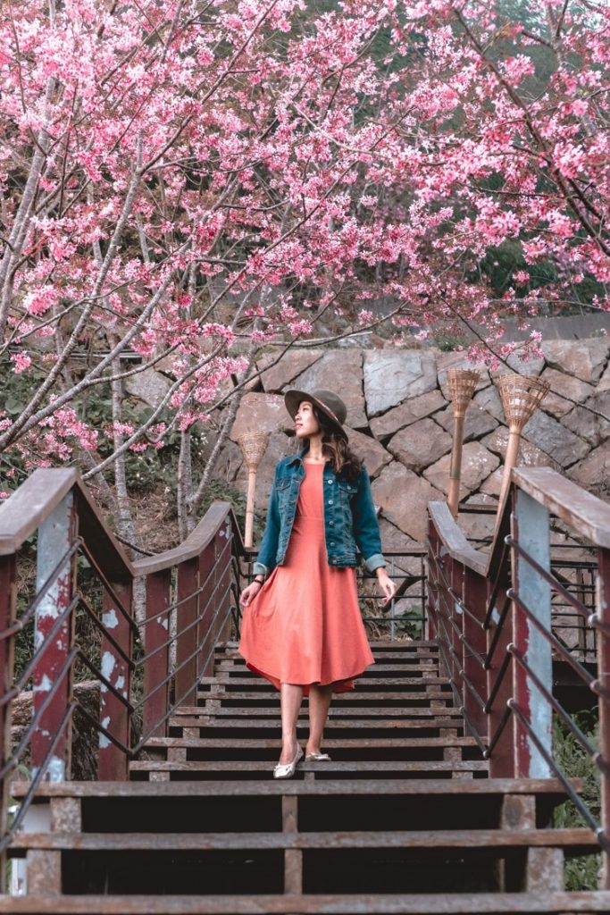 PrAna Collaboration with @witandfolly Image #3 - witandfolly.co
