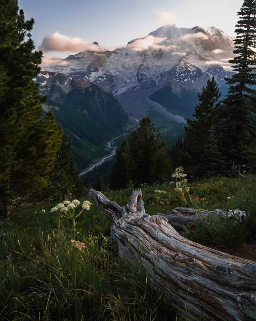 mount-ranier-view-from-sunrise-view-point