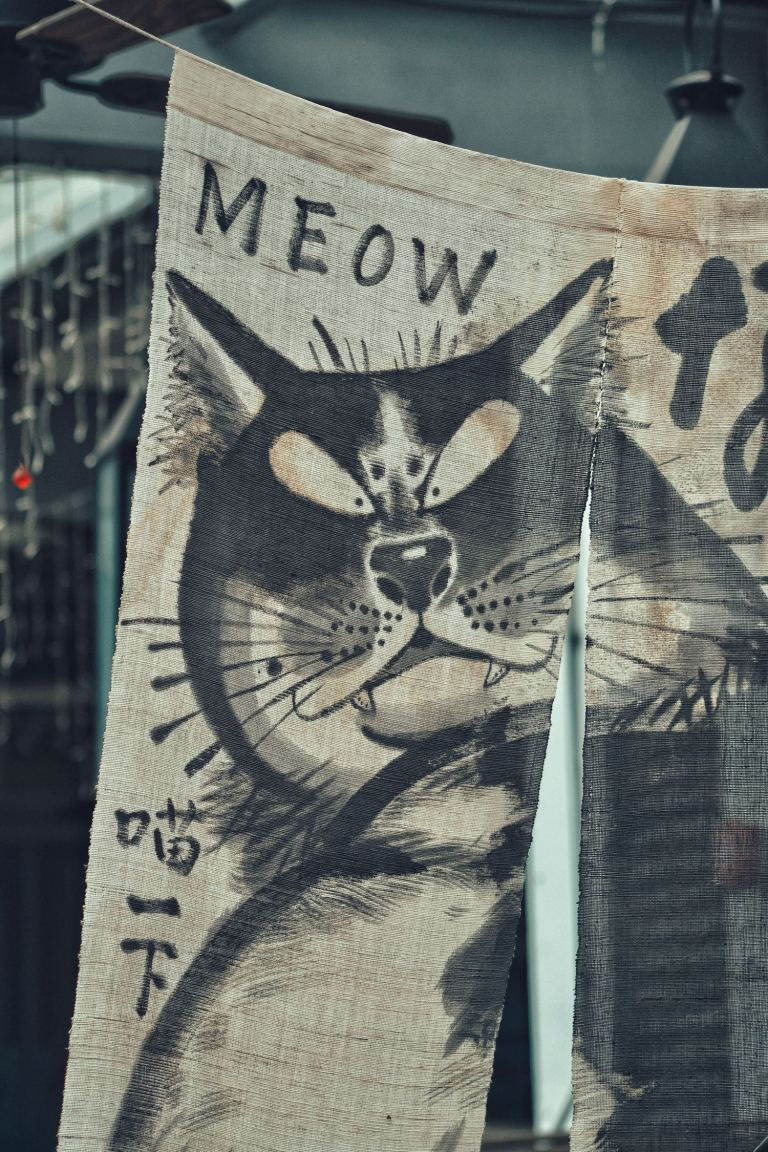 picture of a cat poster