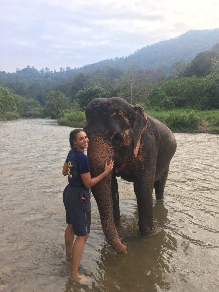 Hugging an elephant in the river Wit and Wishes: Chiang Mai Mountain Sanctuary