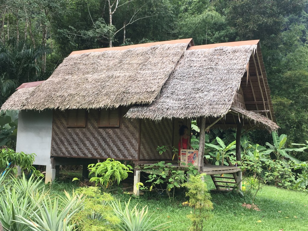 Bungalows at farm in Khao Sok jungle