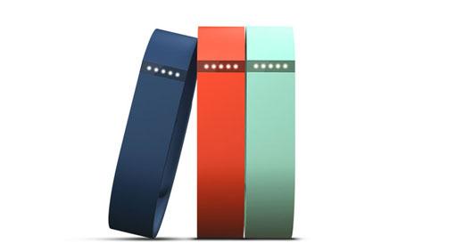 WDF-Fitbit-Flex