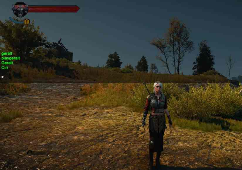 witcher-3-debug-console