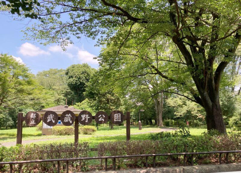 /都立武蔵野公園