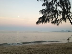 Palm Cove at Dusk