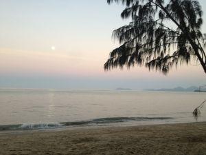 Palm Cove at Dusk