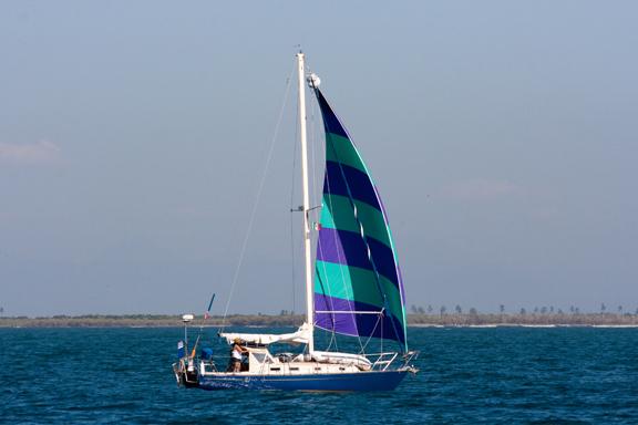 Brio flying her big beautiful asymettrical sail