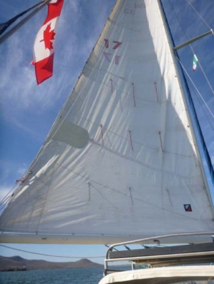 The 5200 Patch on our Mainsail