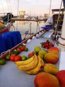 Tropical fruits drying on the deck after being washed in bleach solution to kill any cochroach eggs!