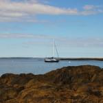 Brio in Watercove, Bailey Island, Maine