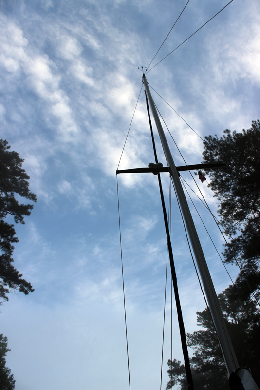 The Great Dismal Swamp - Mast Before