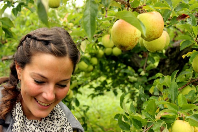 Leah apple picking