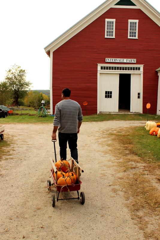 Pumpkin picking wagon