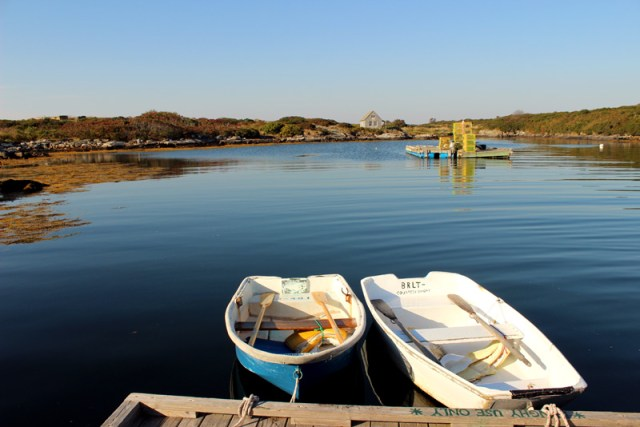 Damariscove day use row boats