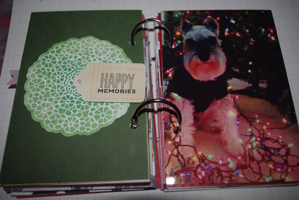 Initiation Fall 2012 and Holiday scrapbook 061