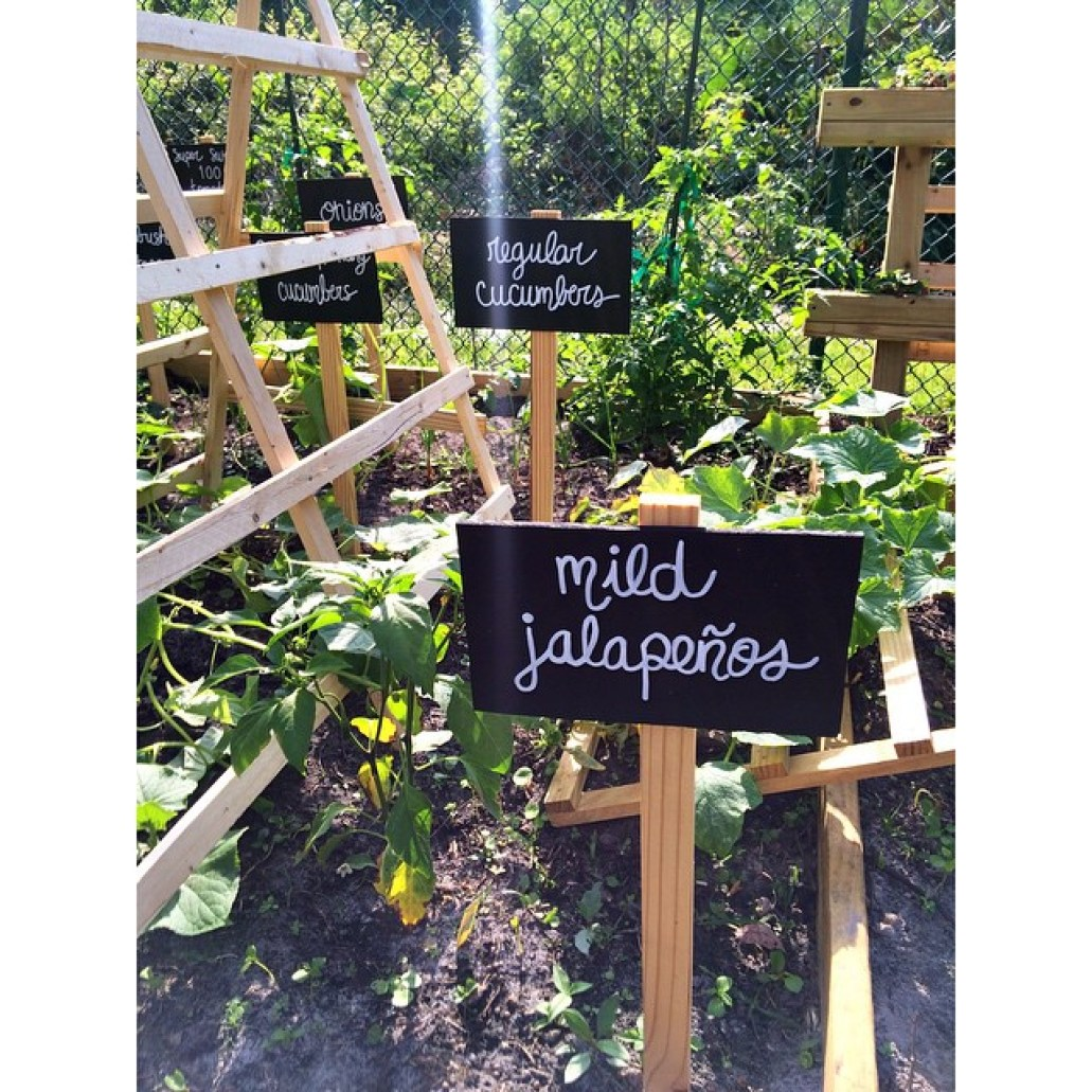 Garden signs for your vegetables