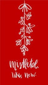 Iphone 5 screen Mistletoe